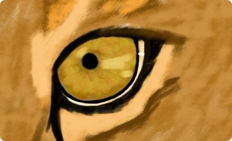 Through a Lion's Eye