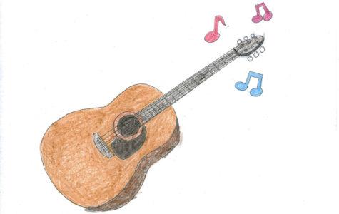Country singer songwriter hits her big break